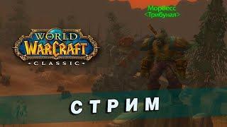 World of Warcraft Classic [7] - Охотник 27+ LvL