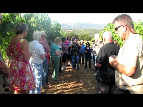 Jerry Henry, Saluting a friend ln the vineyard