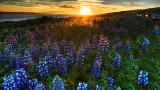 Anhken, Saav - Calyon (Suncatcher Remix)