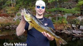Walleye Wednesday - 4th edition by Scotties Outdoors - feat. Facebook group - Ontario Walleyes | Scotties Outdoors