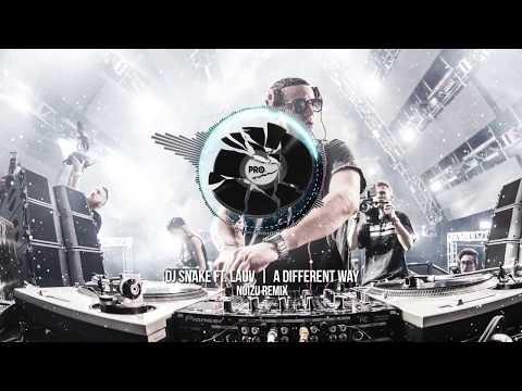 DJ Snake ft. LAUV - A Different Way (Noizu Remix)