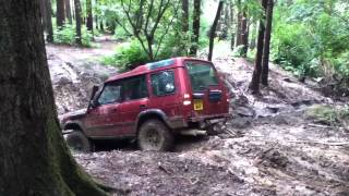 Landrover Discovery Off Road At Picadilly Wood