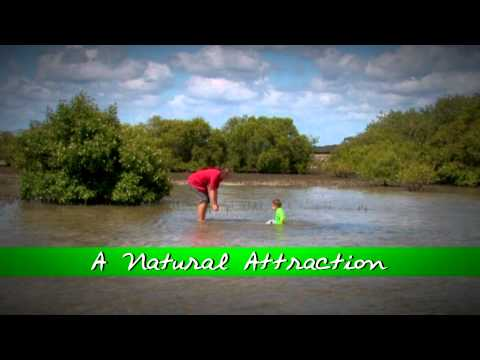 A Natural Attraction 15sec TV Advert
