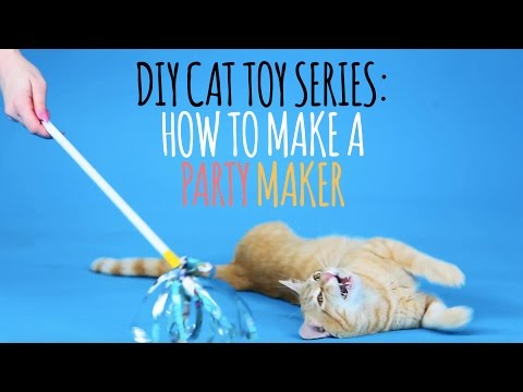 Thumbnail for Cat Video DIY Cat Toys - How to Make a Party Maker