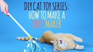 DIY Cat Toys - How to Make a Party Maker