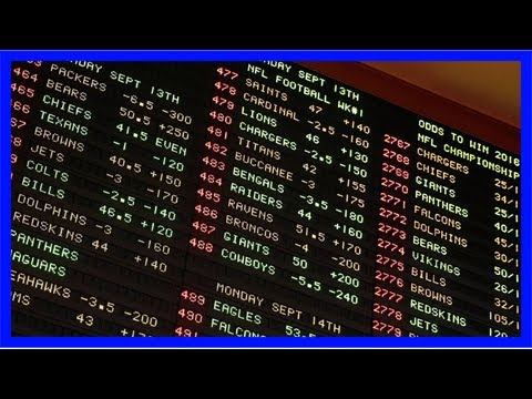 Supreme court sports betting hears arguments sports betting south africa tabloids