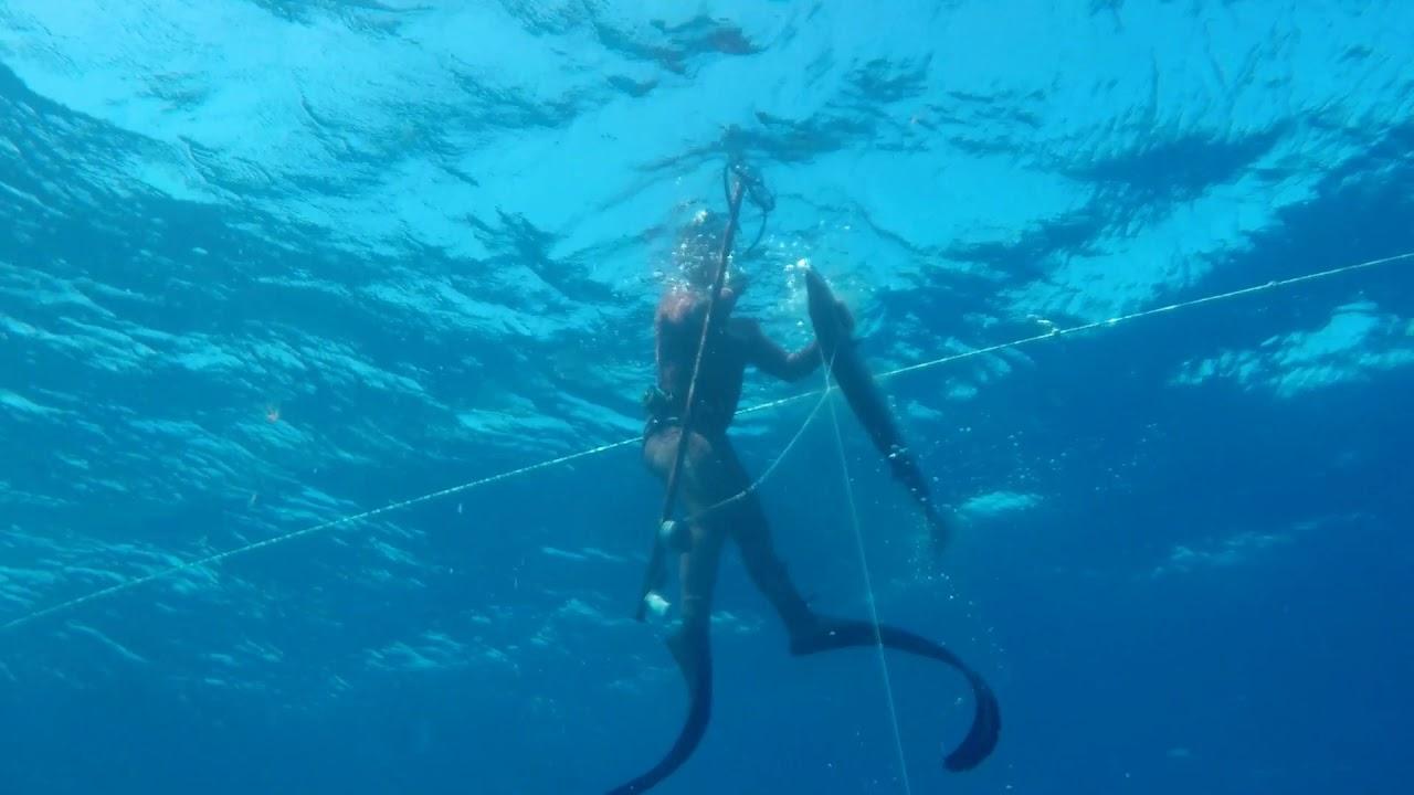 Pescasub - Spearfishing.