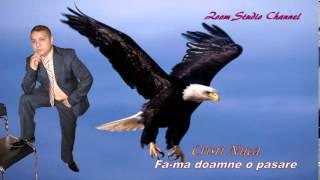 CRISTI NUCA - FA-MA DOAMNE O PASARE, ZOOM STUDIO (HORA)