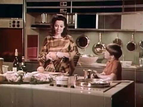 1960s Vintage Film  The Home Of The Future 1999