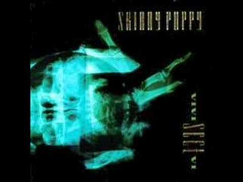 Harsh Stone White Skinny Puppy