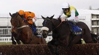 Many Clouds | Cotswold Chase: Many Clouds dies after beating T…