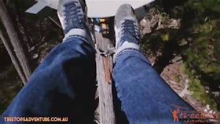 Hollybank Treetops Adventure - Tasmania