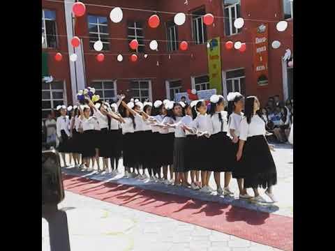 Школа  М.В.Ломоносова флешмоб девочек (выпускной2019)