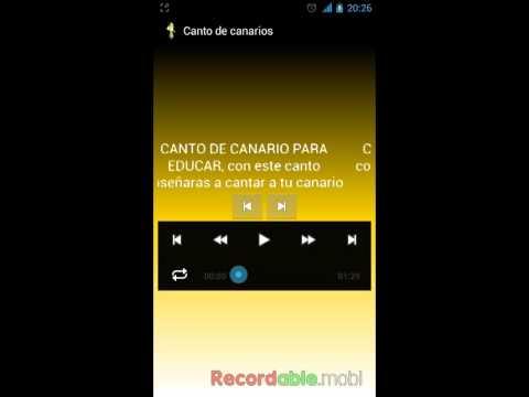 MP3 CANARI TÉLÉCHARGER SONNERIE