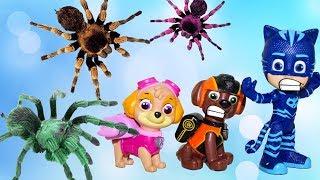 Щенячий патруль Гигантский паук напал Ромео Герои в масках Мультики для детей Мультфильмы Игрушки