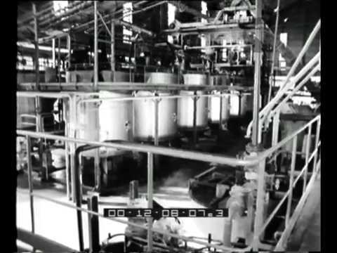 Numero unico sull'industrializzazione della Sicilia