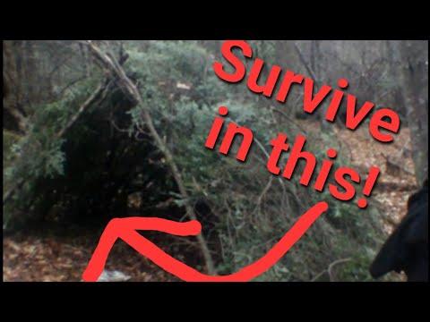 Wilderness Survival Shelter Building part 1