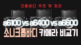a6100 vs a6400 vs a6600 소니 크롭바…
