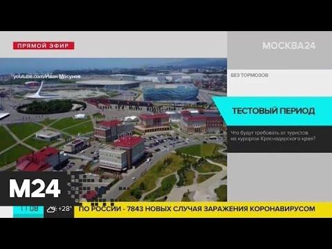 Что будут требовать от туристов на курортах Краснодарского края - Москва 24