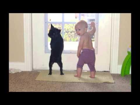 可愛い子供と動物 3種類 【可愛過ぎてヤバイ!!ww】