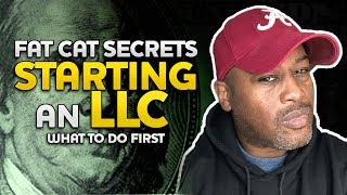 FAT CAT SECRETS  the first STEPS to STARTING AN LLC in 2019 How to start a BUSINESS Plan for MONEY