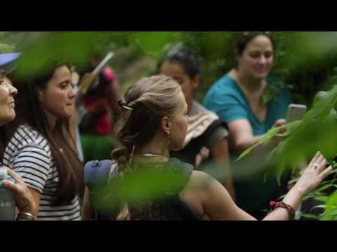 Sky House Herbal Apprenticeship Program HD