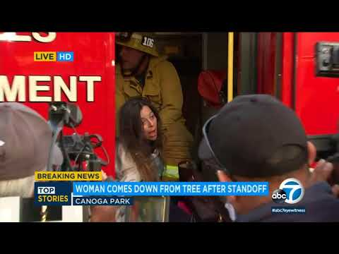 Canoga Park standoff ends peacefully 11 hours after woman climbs tree I ABC7