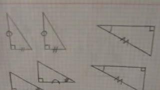 Первые три признака равенства прямоугольных треугольников