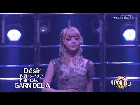 Garnidelia-desir