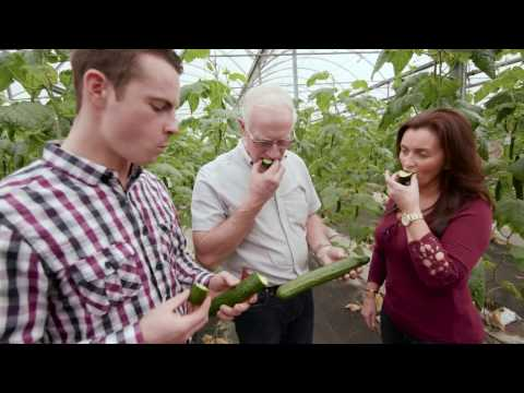 Eat Fresher: Subway Sourcing Ontario Grown Vegetables