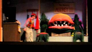 Patrick Martin, Little Shop of Horrors