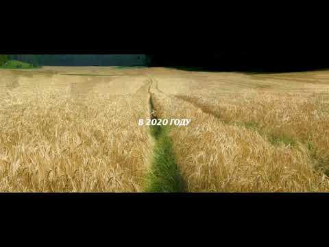 Лесси. Возвращение домой - Русский трейлер (2020)