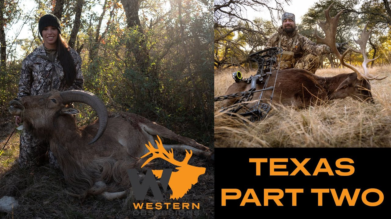 EPIC Texas Hunt - Fallow Deer & Aoudad Part Two