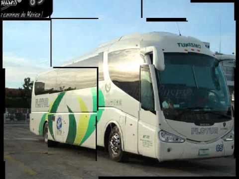 Gays gratis viajes en autobus