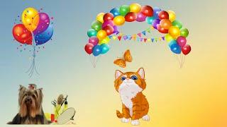 🎈😺🎈Коты и воздушные шары #котэ #котошары. Весело!🎈