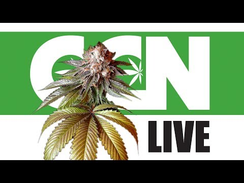 Cannabis Culture News LIVE: Did Canada's Gov't Just Says Yes To Craft Cannabis?