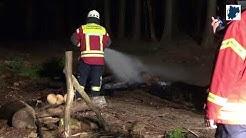 Waldbrand zwischen Wittgert und Nauort