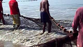 Fisherman of  Benaulim.