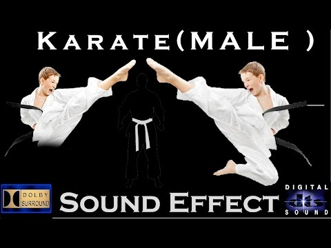 Karate Sound Effects | Male Yelling | High Quality Audio