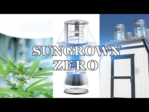 Sungrown Zero Introduction