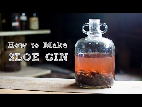 How To Make Sloe Gin >> How To Make Sloe Gin Simple And Amazing Food It Yourself