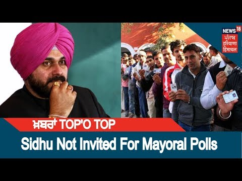 Mayoral Polls in Amritsar and Patiala, Navjot Singh Sidhu Not Invited | ਖ਼ਬਰਾਂ  TOP'O TOP