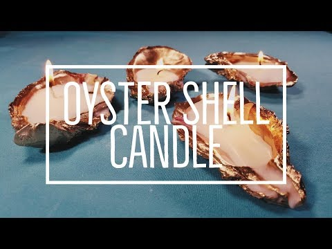 DIY Oyster Shell Candles | CheapCaribbean.com
