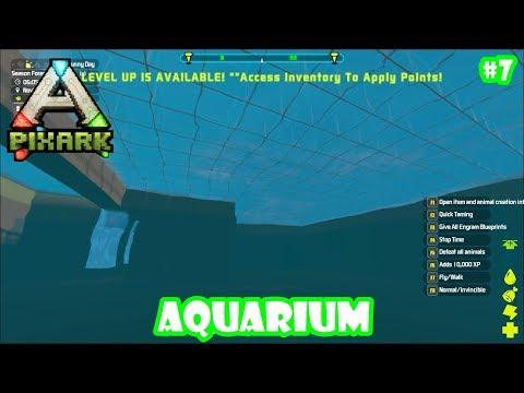 Bangun Aquarium Yuuu #7 - Pixark Indonesia