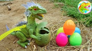 Journey to find long-necked dinosaur eggs - G481L ToyTV children's toys