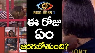 Bigg Boss Telugu 3 | What Happen Today Bigg Boss 3 Episode | Rahul | 9th Week Nominations PDTV