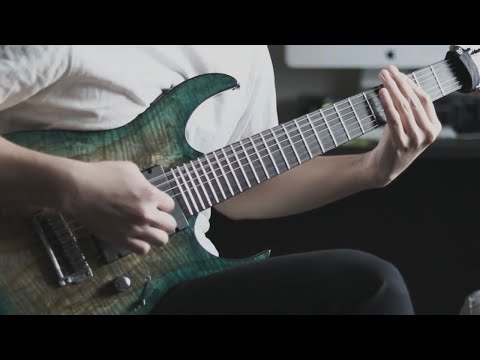 monuments - leviathan (guitar cover)