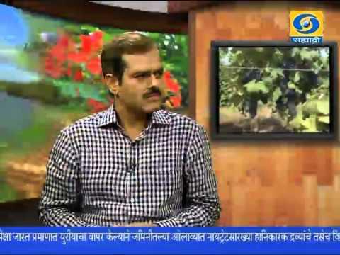 'Sansad Ideal Village Scheme' _ 'संसद आदर्श ग्राम योजना'