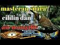 Masteran Suara Burung Cililin Dan Gemercik Air Cocok Buat Masteran Murai Batu Cucak Ijo Dan Kacer  Mp3 - Mp4 Download