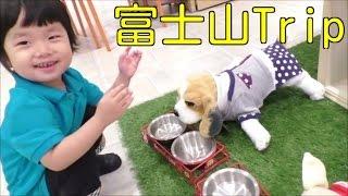 Repeat youtube video ★Memories of Mt. Fuji trip★思い出がいっぱいの富士山旅行2015★
